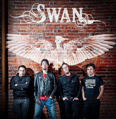 swan-wall