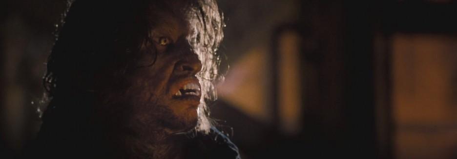 Horror review  Skinwal...