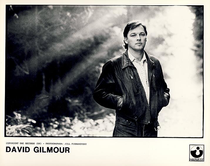 how to get david gilmour sound
